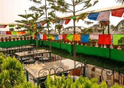 Nepalaya Rooftop garden